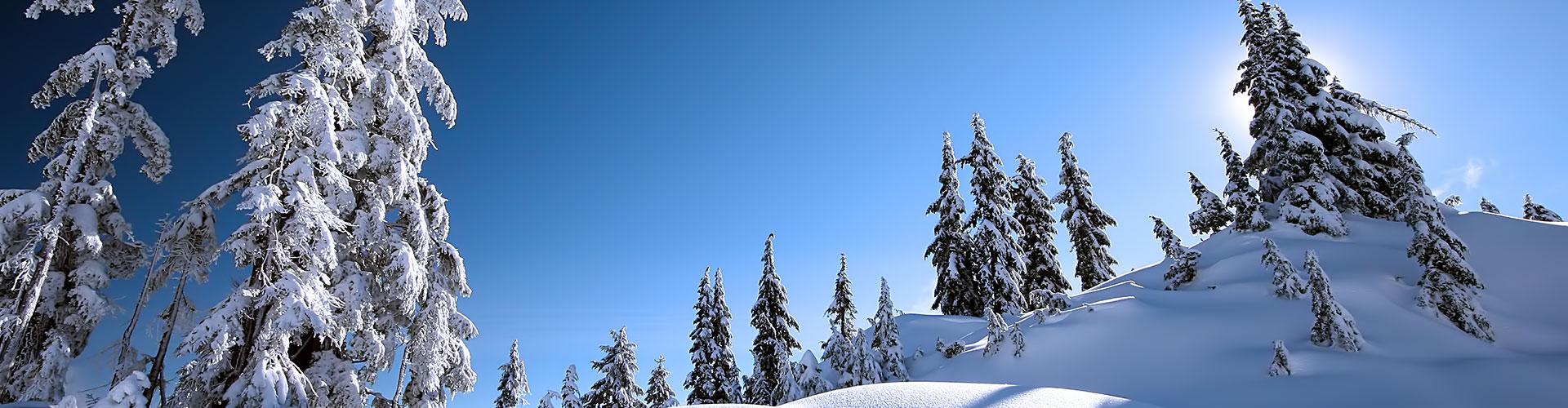 winter-bg3